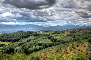 Panoramic-view-of-Montefalco.-Umbria-Italy
